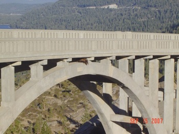 bear bridge2